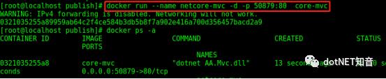 .NET Core 3.0 部署在 docker 上运行