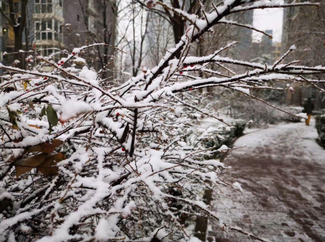 雪҉҉҈雪҉҉҈雪҉҉҈ 快看!你们期待的故宫照片,来了!