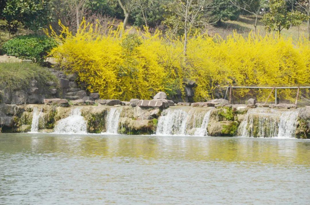 珍珠泉的春天如约而至,这份赏花锦囊赶紧收好吧!